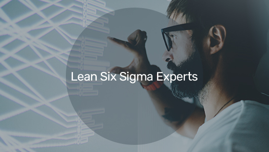 a six sigma expert employee